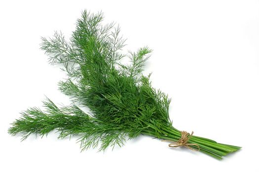 #Dill contains substances that protect your #skin and body from #carcinogens in cigarette #smoke and charred food