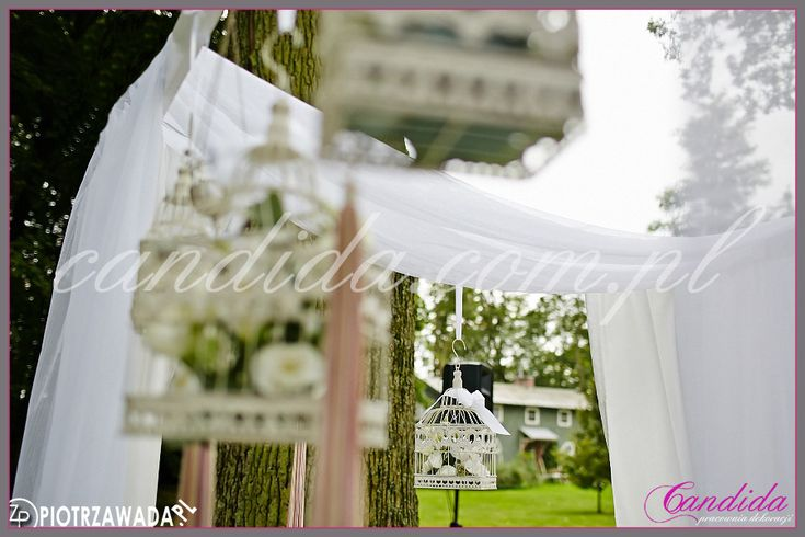 dekoracja ślubna plenerowa