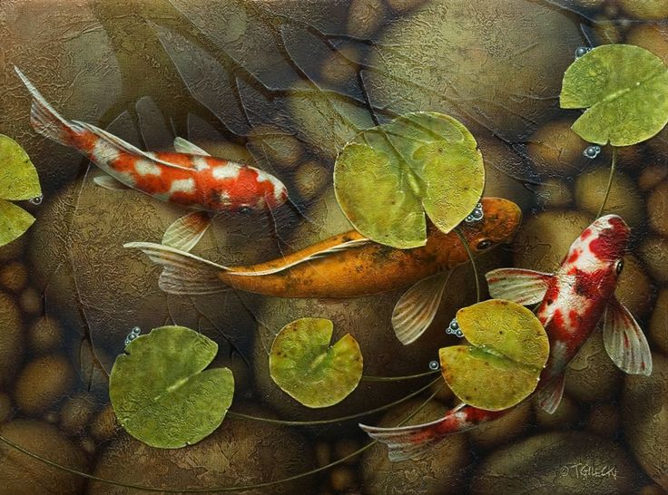 990 best stained glass aquarius images on pinterest for Koi pond art