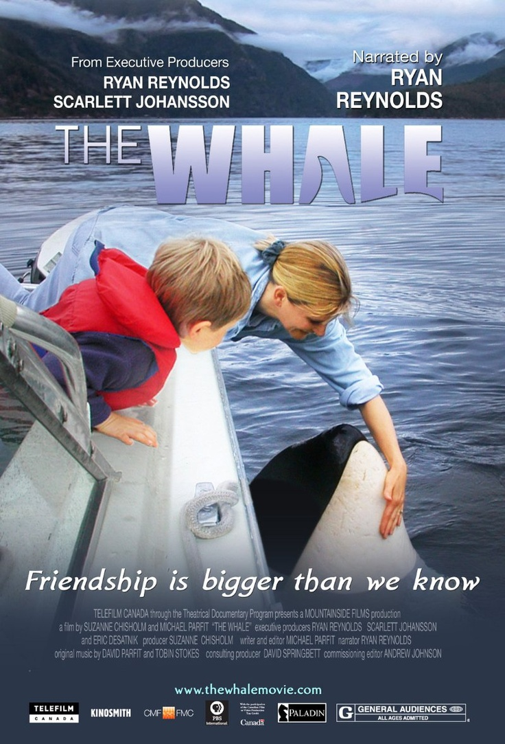 Amazing story that everyone should see. The Whale (2011) - IMDb- Orcas are social. They live with their families all their lives. An orca who gets separated usually just fades away and dies.Luna was alone, but he didn't fade away. There weren't any familiar orcas in Nootka Sound, British Columbia but there were people, in boats and on the shore. So he started trying to make contact. And people welcomed him. Most of them.