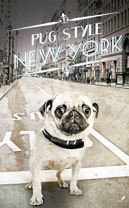 Pug Style Newyork , Diseño / Fotomontage