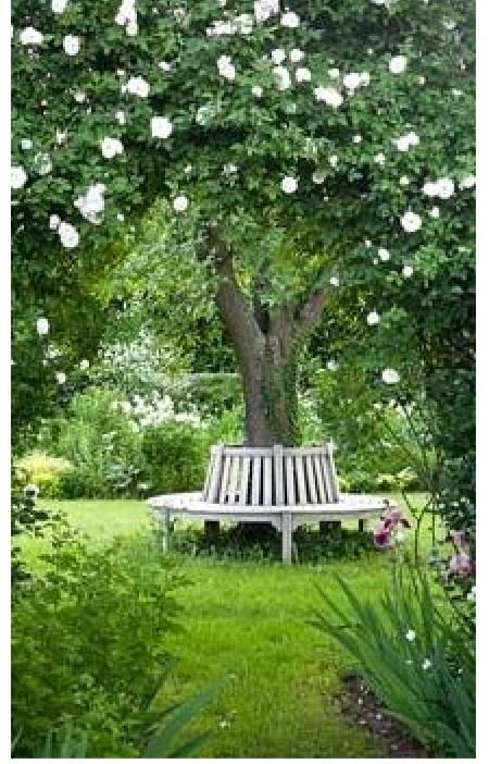 love these benches that surround a tree. It is such a beautiful thing to add to landscape