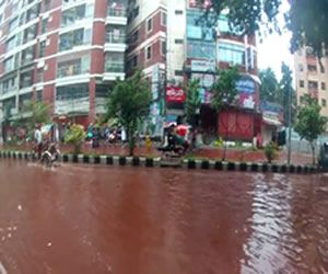 Dhaka streets transform into blood streams after Eid sacrifices