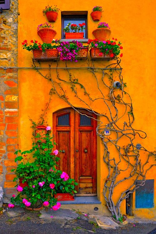 this color is fab! <3: The Doors, Yellow Wall, Window, Vines, Colors, Fine Art Photography, Tuscany Italy, Places, House