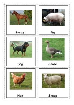 Autism & Special Needs Matching Activity-Farm Animals