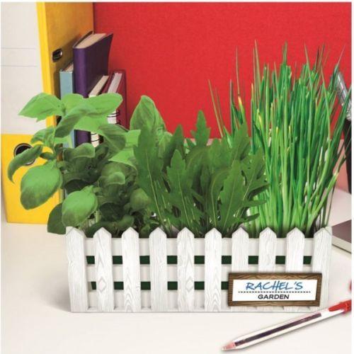 Schreibtisch-Garten-mit-Samen-Erde-Rechen-und-Anleitung-Buero-Fensterbank-Kraeuter