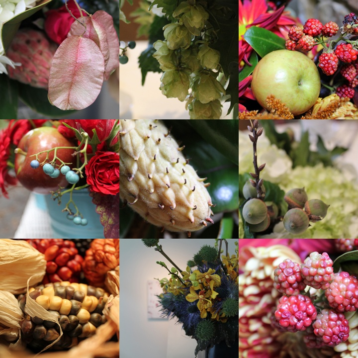 Fall accents for floral arrangements- fruits, pods, berries, and more!: Fruit, Botanical Inspiration, Floral Arrangements, Fall Accents