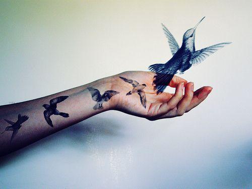 birds-fly-tattoo-Favim.com-343549.jpg (500×375)