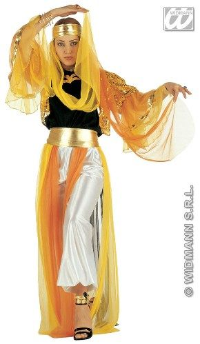 Arabian Nights Costumes | in our Arabian Nights collection, this deluxe harem dancer costume ...