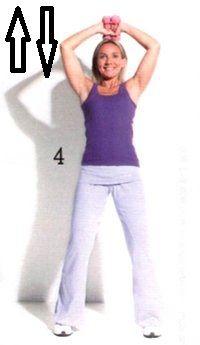 esercizi braccia ginnastica in casa