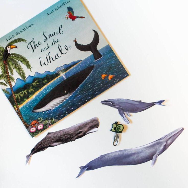 """Ленивое китовье воскресенье... Так на каком же из этих китов путешествовала улитка? В переводе Бородицкой, кстати, упоминания об этом нет. Орррррригинал наше все!  Но Кирюху задачка не удивила. Конечно, sperm whale это Амос из """"Амоса и Бориса"""" , blue whale ..это любимая фигурка Schleich, остается humpback whale! Горбач! Именно его миграционный путь описала Дональдсон, а Шеффлер - нарисовал. Мы его даже по карте прошли. И да, в мире есть гавань со скалами black as soot! #thesnailandthewhale…"""
