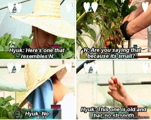 Hyuk is a savage maknae! I love it! #VIXX Meme Center | allkpop