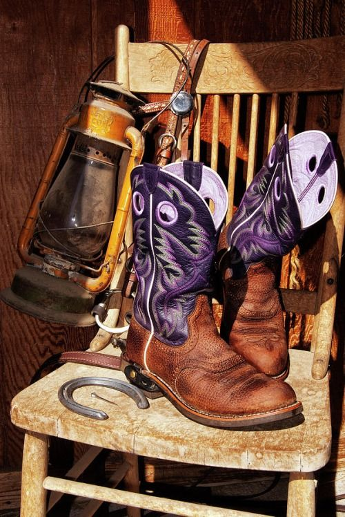 17 Best Images About Country Western Still Life On