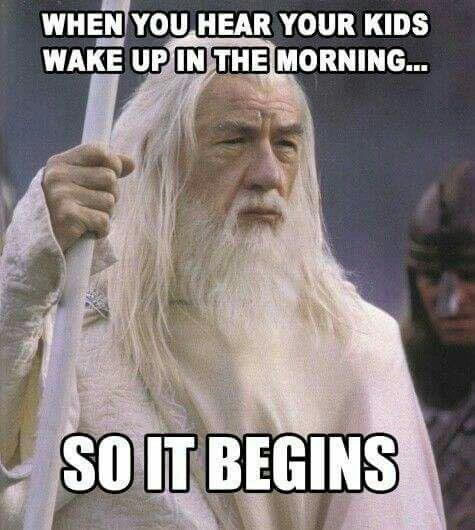 When It Feels Like Every Day Is A Battle Of Wills Funniest MemesFunny