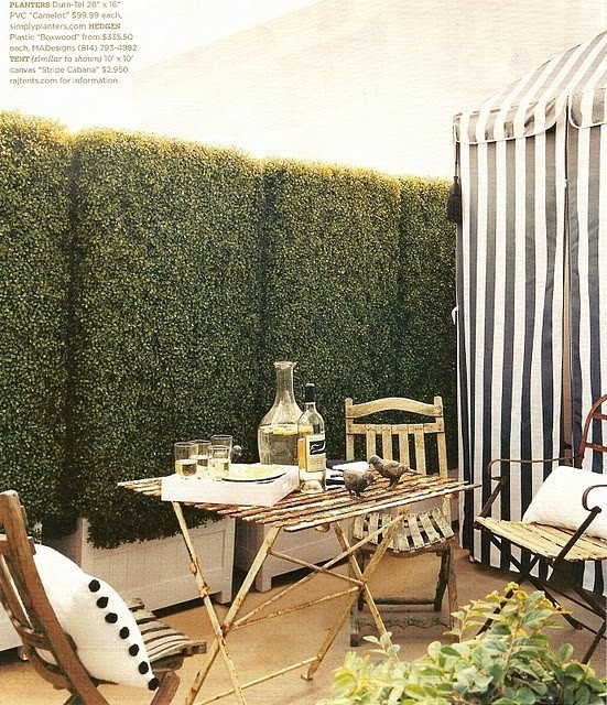 Courtyard with french chairs and stripes: Idea, Boxwood Hedge, Hedges, Outdoor Living, Exterior, Patio, Gardens, Backyard, Outdoor Spaces