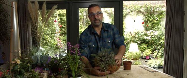 Groenstylist Romeo Sommers is elke zaterdag te zien op margriet.nl, waar hij je stap voor stap op weg helpt om met bloemen en planten iets moois te creëren. Dezeweek: maak een mooie hanging basket voor het najaar! Veel mensen zitten met de vraag hoe ze planten in een hanging basket water moeten geven. Romeo heeft…