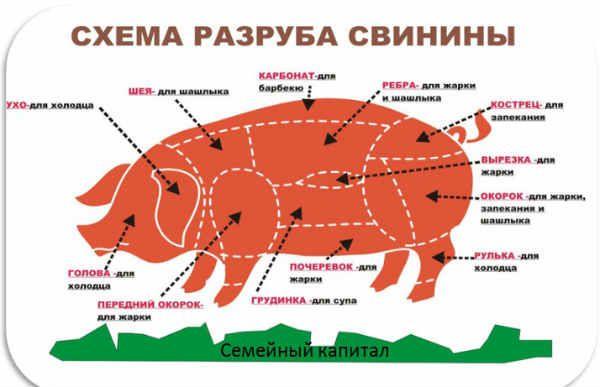 Разделка туши свинины видео