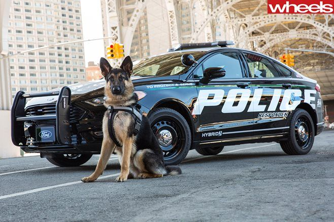 2018 Ford Police Responder Hybrid Sedan -(Ford show car) Expensive, and protected by a K9 Officer.