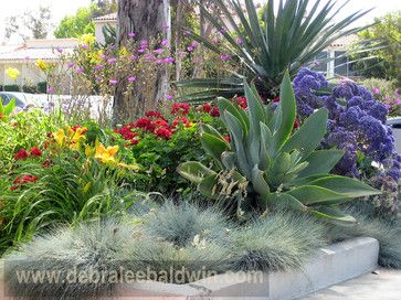 596 best images about desert landscaping on pinterest san diego agaves and succulents - Succulent container gardens debra lee baldwin ...