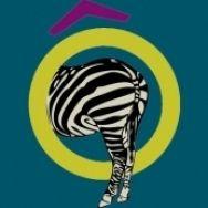 Logo à la Metro Goldwyn Mayer ! Un Zèbre Au Grenier