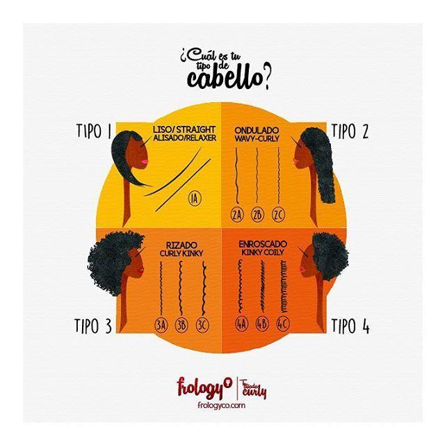 Afrobelleza: Tipología del cabello afro ¿cuál es nuestro tipo de cabello? - frologyco.com  #afroblog #infografia #afrolatina #afro #cabelloafro