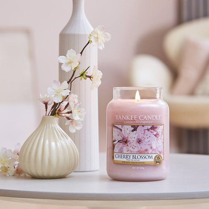 Un encantador abrazo de flores frescas de Primavera que convierte la vida en color de rosa.