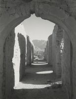 Fort Lowell Ruins, Ansel Adams  Good Example of Landscape and Depth of Field Photography