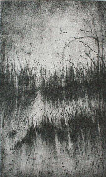 Francois Reau L. Penumbra I, Mine sur Papier, 2012 - 50 x 30 cm