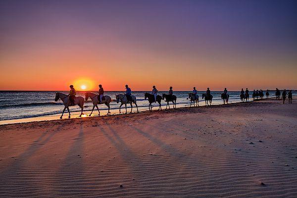 Horse Ride At Sunset Barrosa Beach