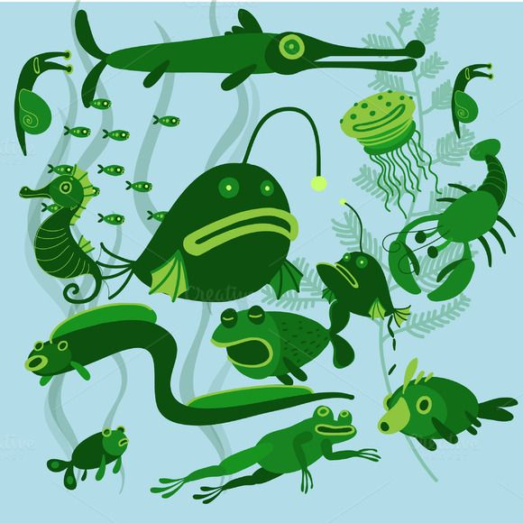 River fish in vector set ~ Illustrations on Creative Market