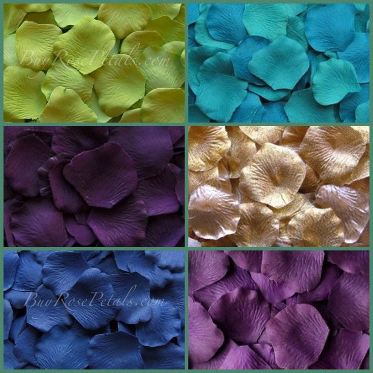 Silk rose petals in the beautiful peacock wedding theme colors of greens, teal, turquoise golds, deep blues and vibrant violets and plums