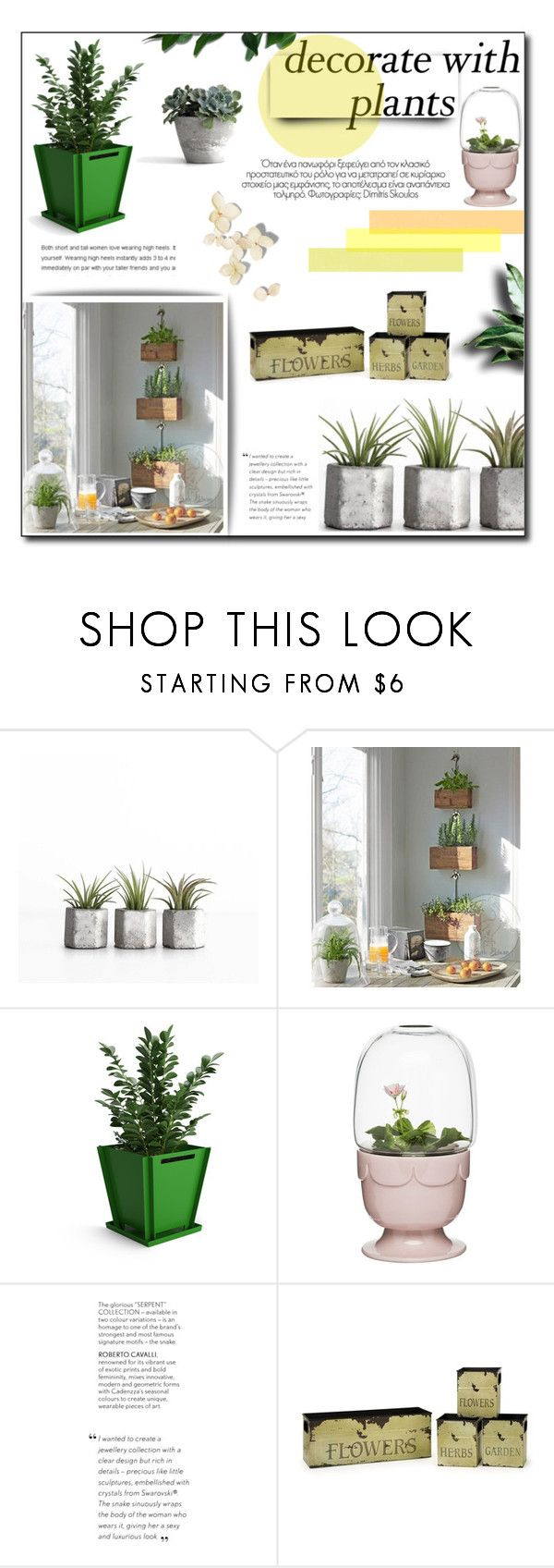"""Decorate With Plants"" by achernar ❤ liked on Polyvore featuring interior, interiors, interior design, home, home decor, interior decorating, Sagaform, plants and planters"