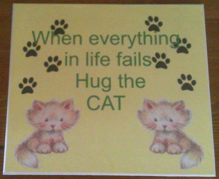 Hug the cat. £8.50.