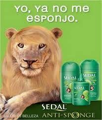 Este anuncio nos quiere decir que si usamos ese acondicionador se nos quedará el pelo libre de abultamiento o encrespamiento. Le ponen el pelo liso al león (rasgo único en personas humanas, en este caso) queriendo decir que hace muchísimo efecto.