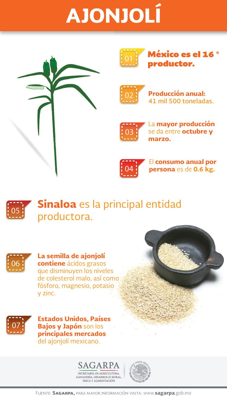 12 best images about potasio on pinterest omega 3 bottle and plays - Alimentos ricos en magnesio y zinc ...