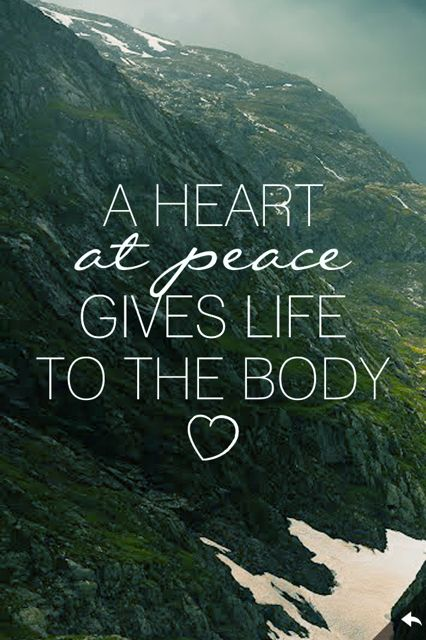 A Heart in Peace Gives Life to The Body.