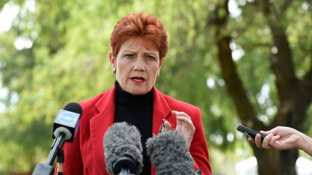 Pauline Hanson's One Nation party is now a major force in Australian politics, securing four Senate seats in an independent crossbench that has swelled to 11.