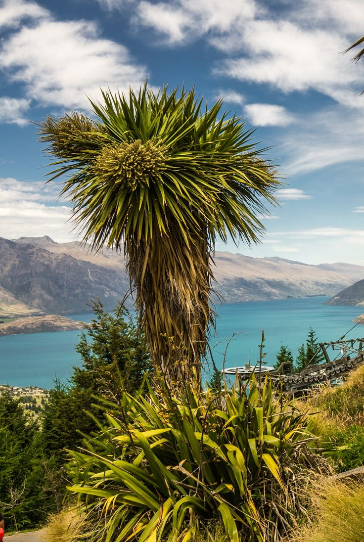 Queenstown, The South Island, New Zealand