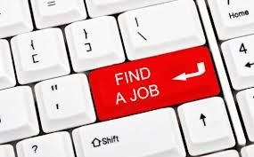 placement to placement provides jobs in related field