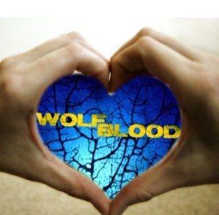 I am a fan of wolfblood