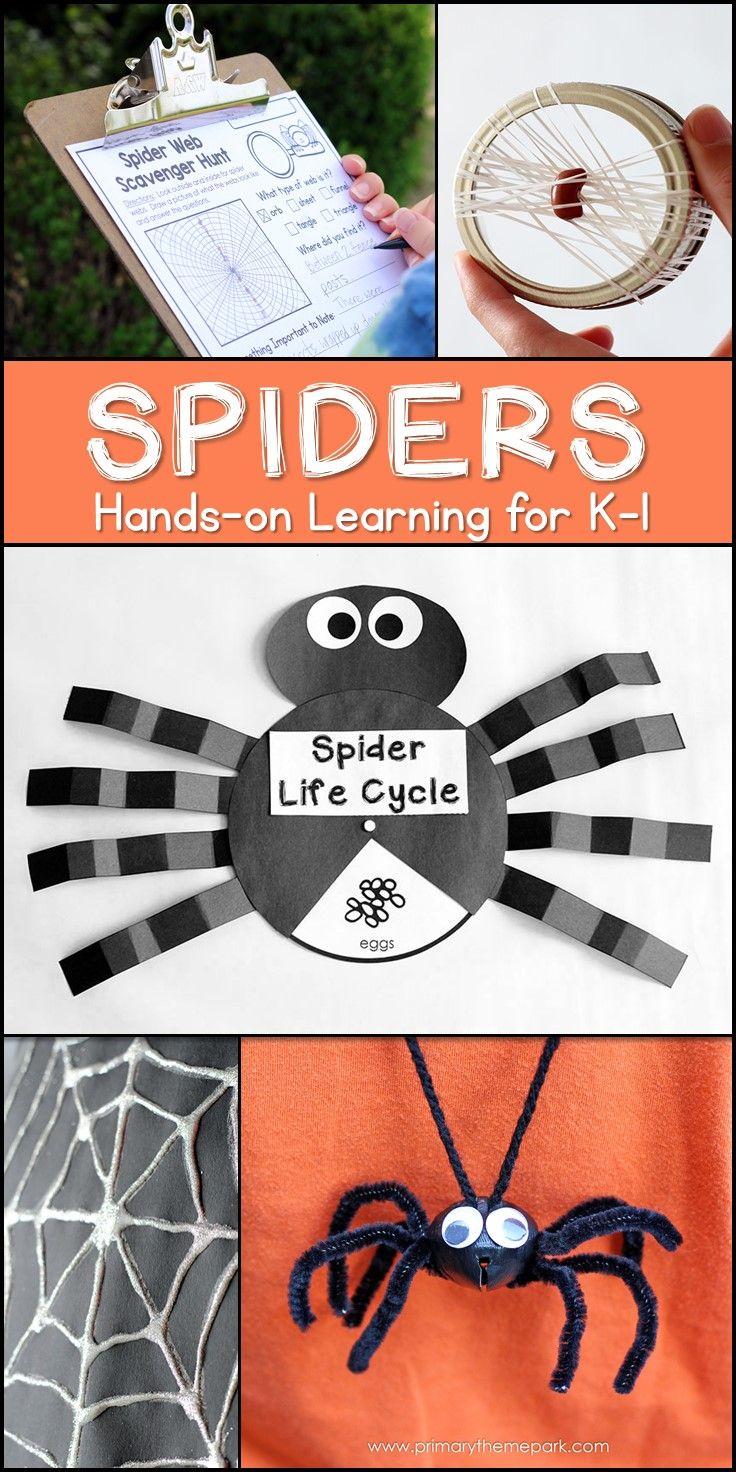 Spider Unit For Kindergarten And First Grade 1st Grade Crafts Spider Unit Halloween School Crafts [ 1472 x 736 Pixel ]