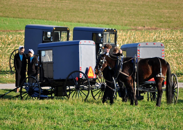best amish mafia images amish mafia and ha ha get an authentic taste of lancaster s amish country guided bus tours amish farmhouse tours and more
