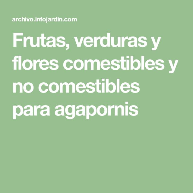 Frutas, verduras y flores comestibles y no comestibles para agapornis