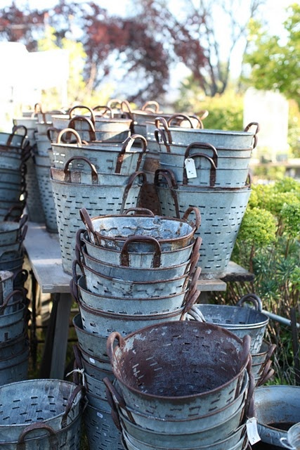 Grape buckets.