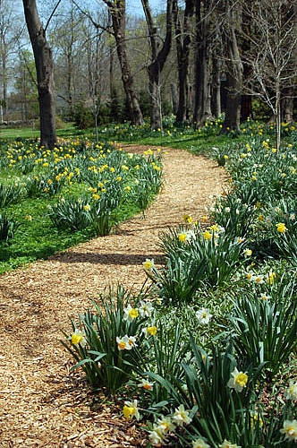 Flower Garden Path 246 best garden walkways and path ideas images on pinterest