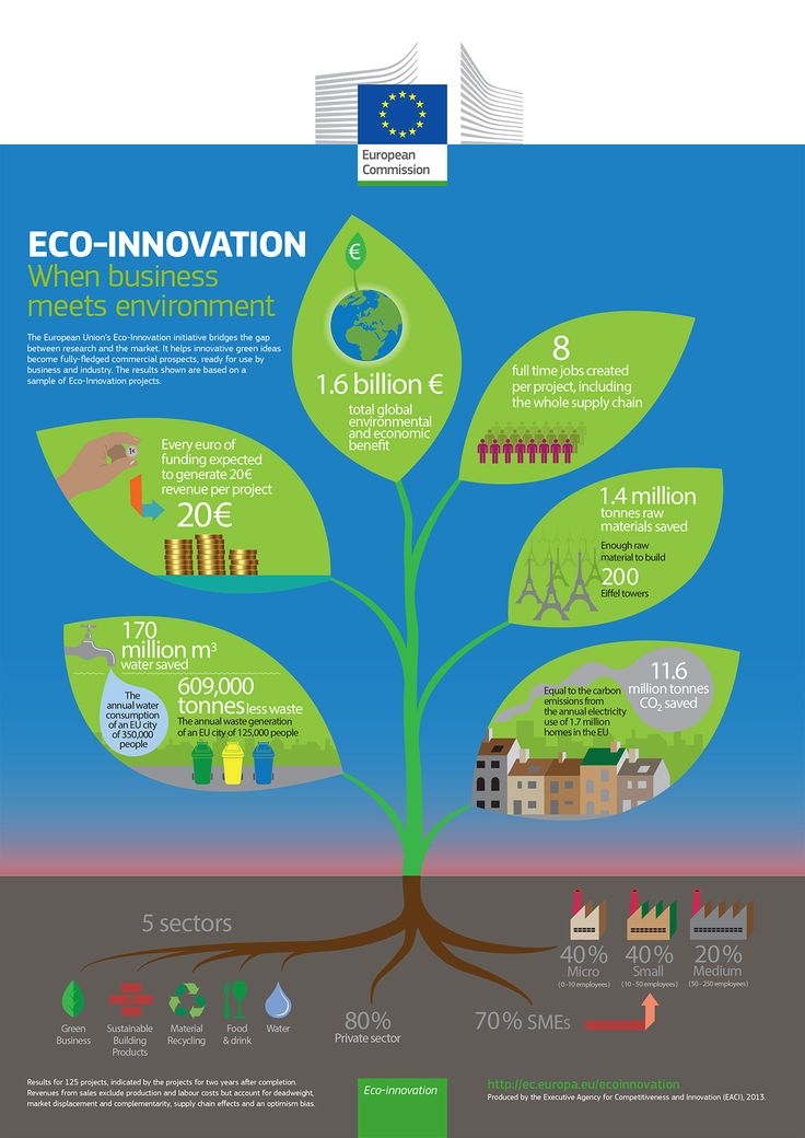 Eco innovation when business meets the environment (