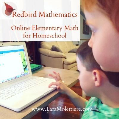 Online math for elementary ages. Redbird Mathematics from Giftedandtalented.com and how it works for my active learner.