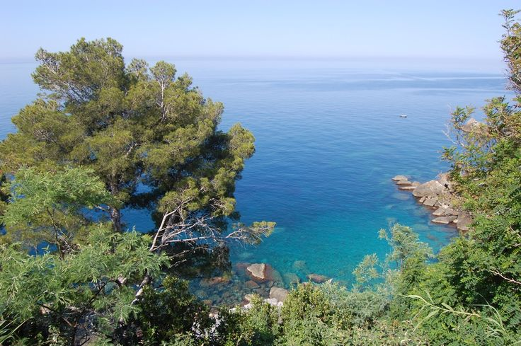 A green oasis on the sea of the #cinqueterre