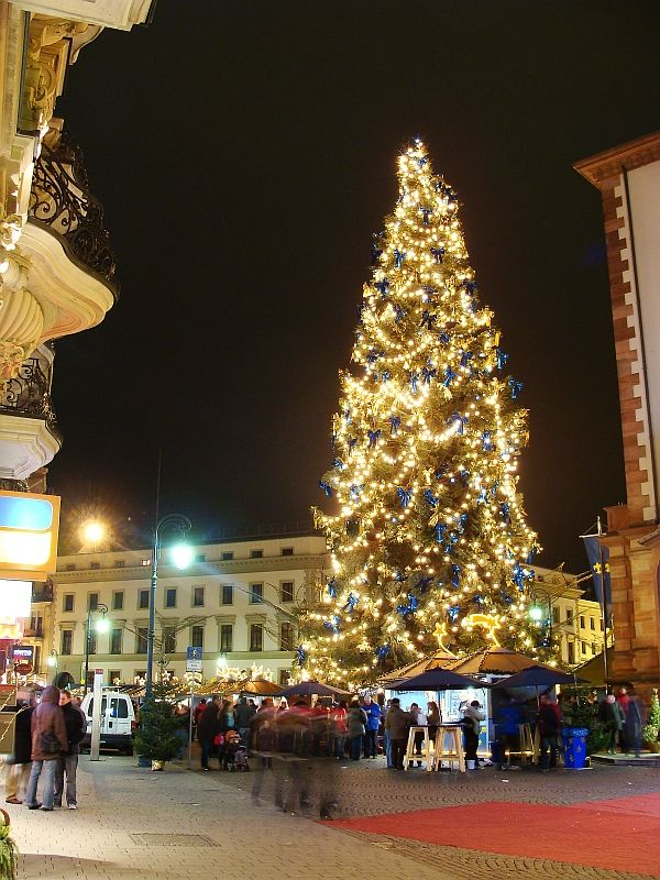 christmas tree in wiesbaden germany it was pretty when i. Black Bedroom Furniture Sets. Home Design Ideas