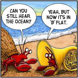 Rock Lobster or are they supposed to be crabs? | Music Humor | Pinterest | Rock lobster, Music ...